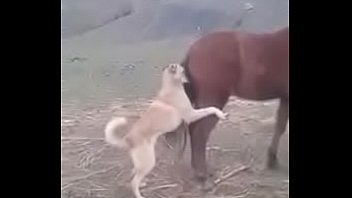 movie cap town Son forces ass raping mom in famely